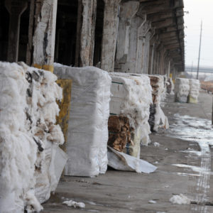 Fire Damaged Cotton Bales